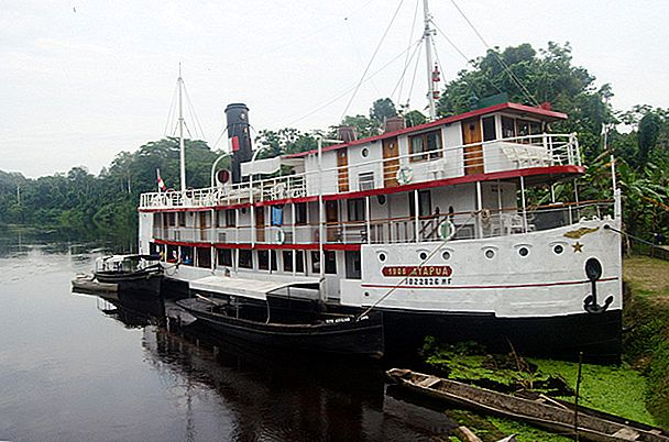 Tips untuk perjalanan riverboat Amazon