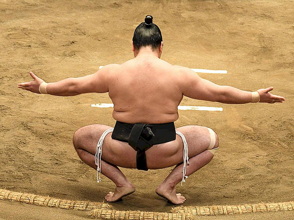 Tokyo sumo scen: tradition, turneringar och hotpots - Lonely Planet