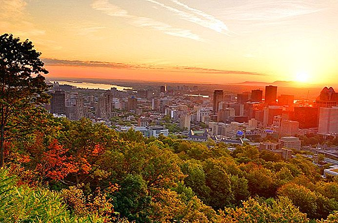 15 Top-rated turistattraktioner i Montreal