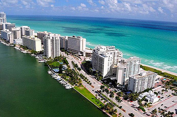 17 Top-rated turistattraktioner i Miami