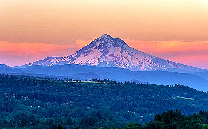 9 Top attraktioner og aktiviteter i Mt. Hood National Forest