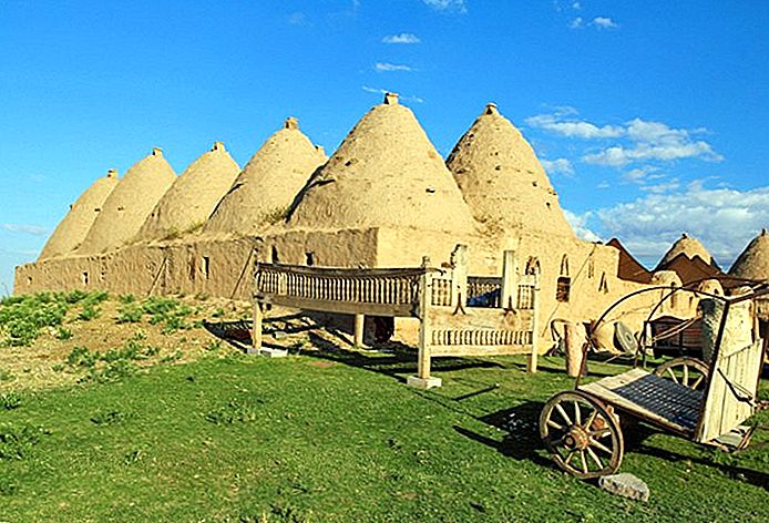 Explorer les principales attractions de l'ancienne Harran