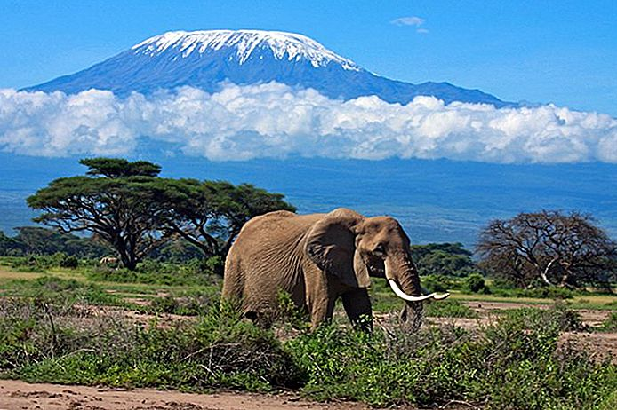 15 Top-rated toeristische attracties in Tanzania