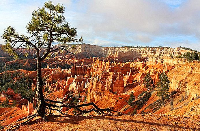 7 beste campings in de buurt van Bryce Canyon National Park