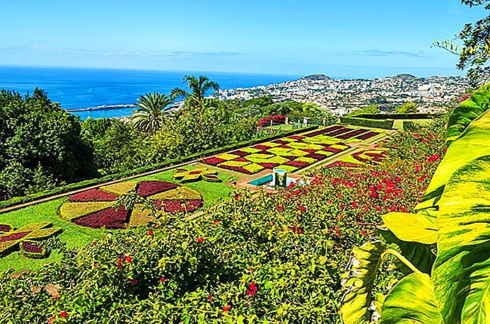 16 Top-rated turistattraktioner i Funchal