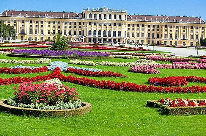 Visitar el Palacio de Schönbrunn en Viena: Highlights, Tips & Tours