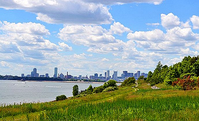 8 Top-Rated rannat Boston Area