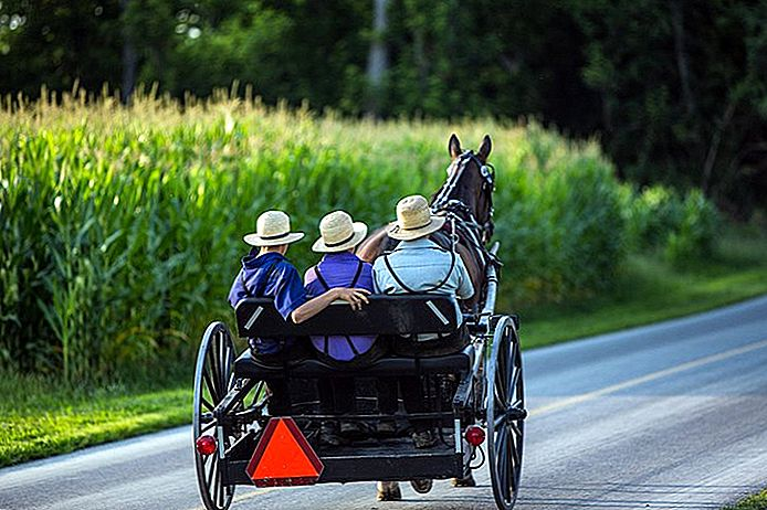 Ohio's Amish Country: 12 Highlights and Treasures Hidden